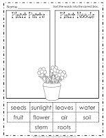 classroom, spring school, idea, teacher appreciation, school stuff, freebi roundup, scienc plant, plant freebi, teaching plants