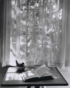 André Kertész | #1959 #window #inspiration #photography