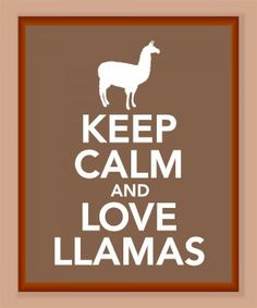 LOVE LLAMAS!!!!!! But how can you keep calm when you are in love with llamas?????