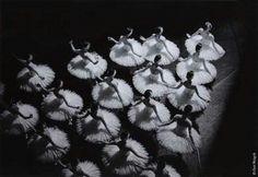 Lago de los cisnes #ballet
