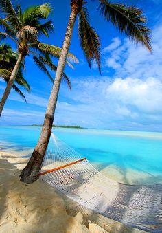 beaches, cook islands, heaven, british virgin islands, summer beach, at the beach, hammock, place, summer days