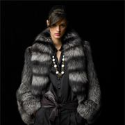 Dark and Daring, this beautiful chinchilla fur coat is stylish & warm even on the coldest days!