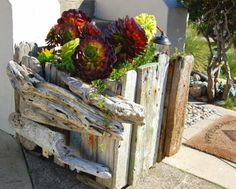 Make a driftwood planter for the garden, patio, or front door.