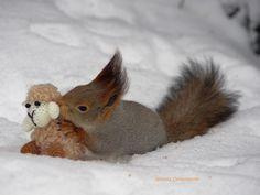 Sweet/ Яндекс.Фотки