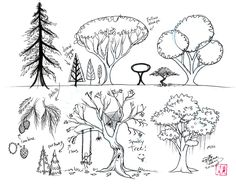 Draw Trees by Diana-Huang.deviantart.com on @deviantART