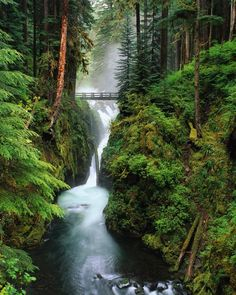 Hoh River Cascading Through Olympic National Park, Washington