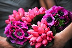 anenomes or oriental poppies and tulips pink fuschia bouquets from freed photography