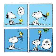 Snoopy helps Woodstock.