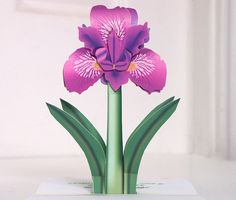 3D Popup Mothers Day Irises card All that I am I by CardNotions, $5.00