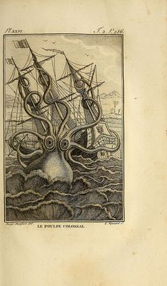 Le Poulpe Colossal - The Giant Octopus