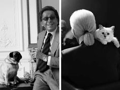 """Valentino once said: """"I don't care about the collection. My dogs (Pugs) are more important."""""""