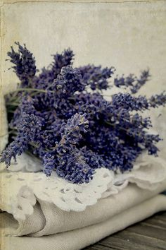 bunches of lavender.