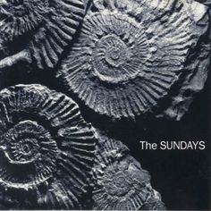 READING WRITING AND ARITHMETIC  The Sundays