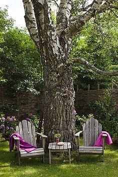 Adirondack Chairs...toujours !
