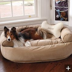 Frontgate comfy couch bed with matching pillow. The best dog bed ever! highly recommend, my baby loves it! Worth every penny.