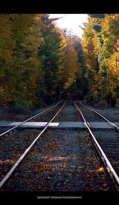 Autumn colors of railway, New England