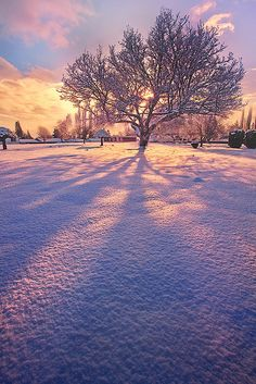 Winter Fire by kevin mcneal, via Flickr