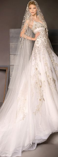Elegant gown and veil . . .