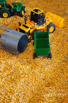 """Corn """"sand""""box"""