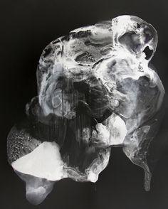 Patti Jordan   Ink on Yupo / Digital Carbon Print
