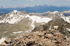 Hiking Quandary Peak | Colorado 14ers