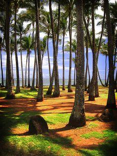 Kapa'a, Kauai, Hawai