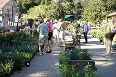 2005 - Annual Fall Plant Sale at the Santa Barbara Botanic Garden www.sbbg.org  Santa Barbara Botanic Garden Image Library