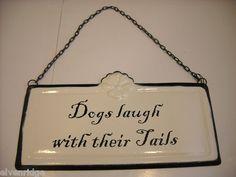 Dogs laugh