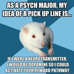 Psychology Major