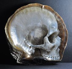 Gregory Halili - bas-relief skulls hand-carved on mother of pearl shells