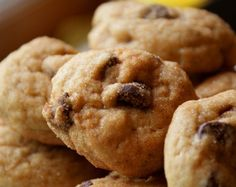 Amish Chocolate Chip Puff Cookies Rolled in Cinnamon & Sugar