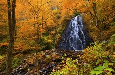 Crabtree Falls - Blue Ridge Parkway, North Carolina
