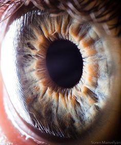 Córnea transparente, com o reflexo dos cílios. Linda imagem!