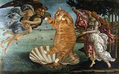 Svetlana Petrova Cat Art - birth of venus boticelli