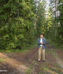 16 Great Virtual Field Trips