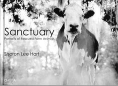 SANCTUARY: Portraits of Rescued FarmAnimals