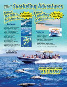 Best Of Maui - Maui Adventure Cruises