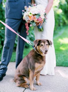 Cute pup on a pink leash! Rustic Chic Wedding Filled With Pretty Pastel Florals | Laura Murray Photography