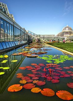 Como Park Zoo & Conservatory by -Chad Johnson, via Flickr
