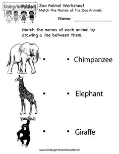 Kindergarten Zoo Animal Worksheet Printable