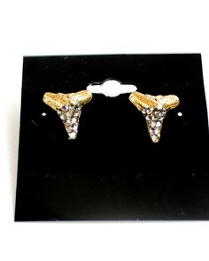 Shark Teeth Studs from JewelMint - hopefully they are as awesome as they look!