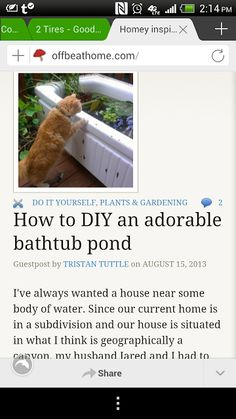 Upcycled Downriver: A BIG Announcement and Two Photo Fridays! Bathutub Pond DIY Feature!