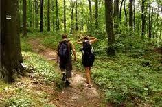 Nature hikes.