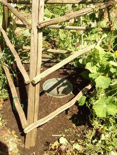 Alternative Gardning: Burying a watering pot in your garden