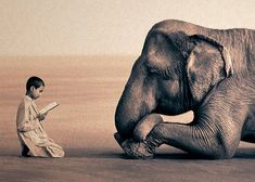 Boy and Elephant by gregory colbert.
