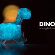 WIN – Dino Pet Prize