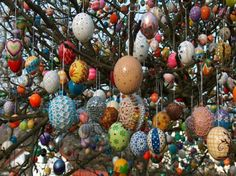Wow -- an Easter tree. I mean,  a *real* tree outside covered in Easter eggs, not a wimpy little indoor tree with a few eggs. This guy is amazing.