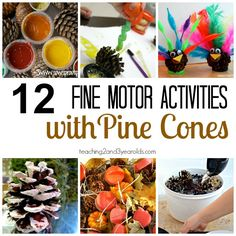 preschool fine motor activities for fall using pine cones - hands-on fun! - Teaching 2 and 3 Year Olds