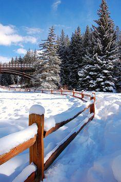 *Winter wonderland