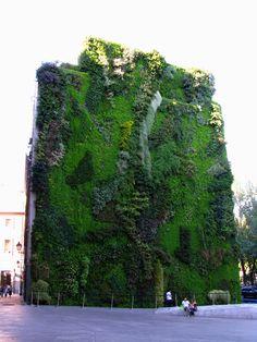 Vertical garden, CaixaForum, Madrid, Spain